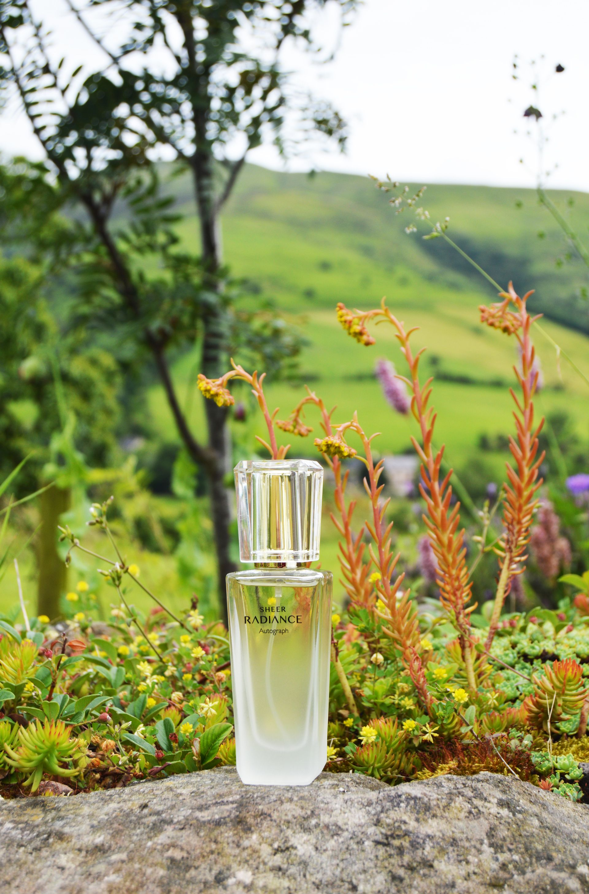 Autograph Sheer Radiance is a delicate, fruity fragrance with a hint of floral. It is lightweight and it is perfect for Summer as it is not overpowering.
